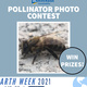 Pollinator Photo Contest Flyer