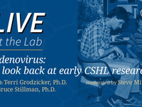 Live at the Lab: Adenovirus – A look back at early CSHL research