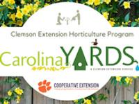 Carolina Yards logo on a background of Carolina Jessamine on a fence.