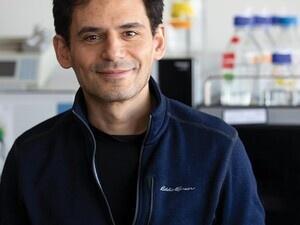 Professor Daniel Amador-Noguez
