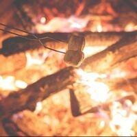Marshmallows roasting over an open fire