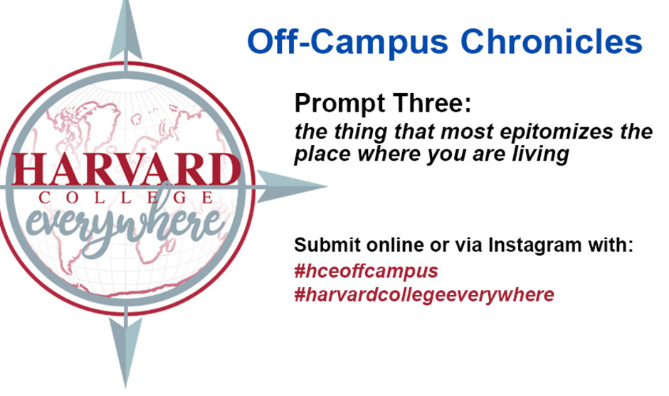 Harvard College Everywhere Off-Campus Chronicles