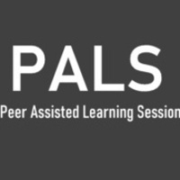 Virtual ACCT 201 PALS