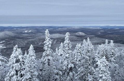 Spruce Mountain by Cathy Frey