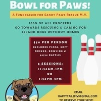 Bowl for Paws