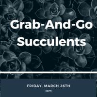Smyth Grab n Go Succulents