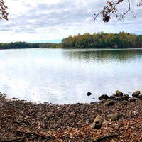 Introspection and Connection Day Hike at Lake Norman State Park