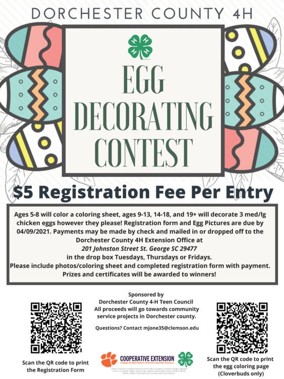 Dorchester 4-H Egg Decorating Competition