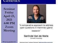 "MBG Friday Seminar: ""A comparative approach to address open questions in mammary gland research"""