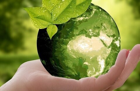 Education Abroad, Personal Travel and Carbon Offsets Webinar