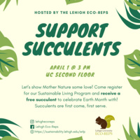 Support Succulents | Sustainability