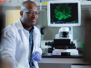 Open BME Seminar Series: Dr. Timothy L. Downing