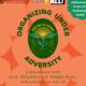 LSA's Organizing Under Adversity
