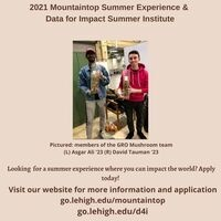 Mountaintop Summer Experience and Data for Impact Summer Institute Applications Open