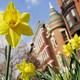 Take & Make: Bloomin' Blossoms