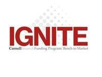 IGNITE: Research Acceleration Webinar-Info Session 1