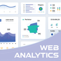 Continuing Education: Certificate in Web Analytics