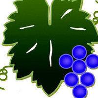 Vineyard Artisans Summer Festival