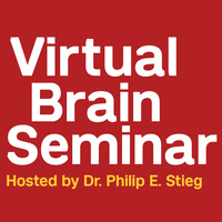 Virtual Brain Seminar - Everything You Need to Know About AVMs