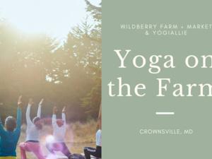 Yoga on the Farm Series: Celebration of Harvest Season