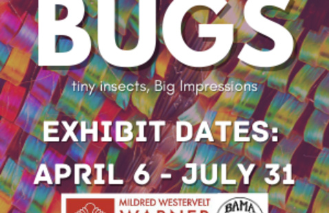 tiny insects, BIG Impressions