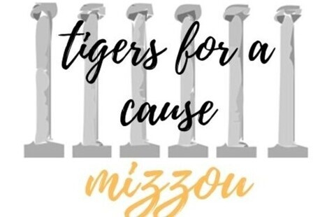 Tigers for a Cause: Center Project Service