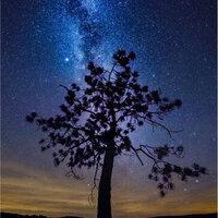 Nightscape Photo Workshop