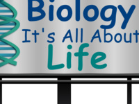 Online Biology Tutoring!