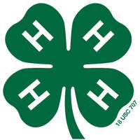 4-H Outdoor Adventures Day Camp