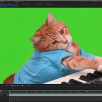 Working Session: Adobe After Effects/Premiere Compositing