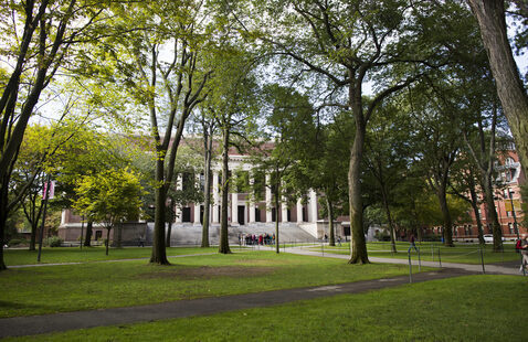 Widener Library is pictured in Harvard Yard at Harvard University. Stephanie Mitchell/Harvard Staff Photographer
