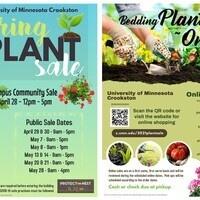 Campus Community Plant Sale