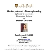 Shabnam Ghiasvand-Dissertation Defense | Bioengineering