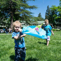 Family First: Paper Kite Workshop