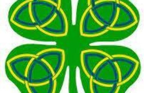 Celtic Spring Show