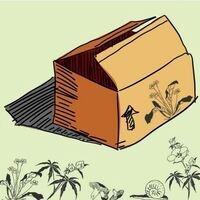 Cardboard box with drawn wildflowers