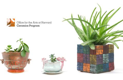Planters by Judy Kanigel, Deighton Abrams, and Joanna Mark. Photos by Deighton Abrams.