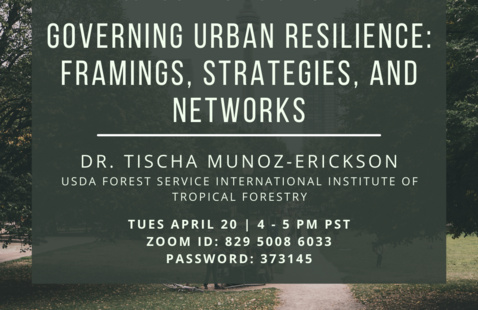 CURes Spring Lecture Series: Governing Urban Resilience: Framings, Strategies, and Networks