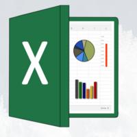Excel: The Essentials