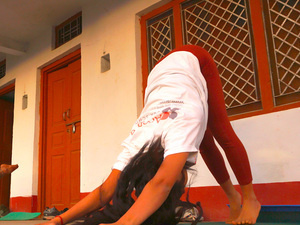 300 Hour Yoga Teacher Training in Rishikesh, India