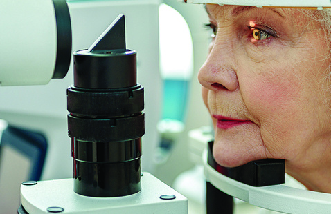 The Eyes Have It: Maintaining Vision in Health and Disease