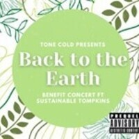 Back to the Earth Tone Cold Concert