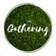 The Gathering #14