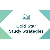ACE Workshop Series: Gold Star Study Strategies