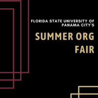 Summer Org Fair