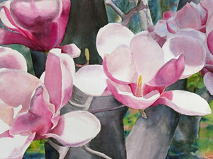 Liquid and Translucent: Watercolors will be on display at the Liriodendron in May and June