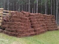 Pine Straw Management Webinar Series - June 15 & 16, 2021