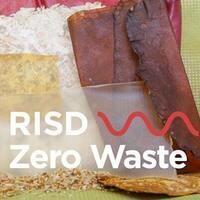 RISD Zero Waste | Wild Edible Plant Walk