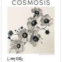 Art Show: Cosmosis