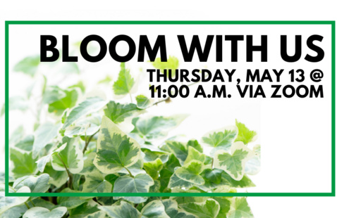 Bloom with Us and Ivy